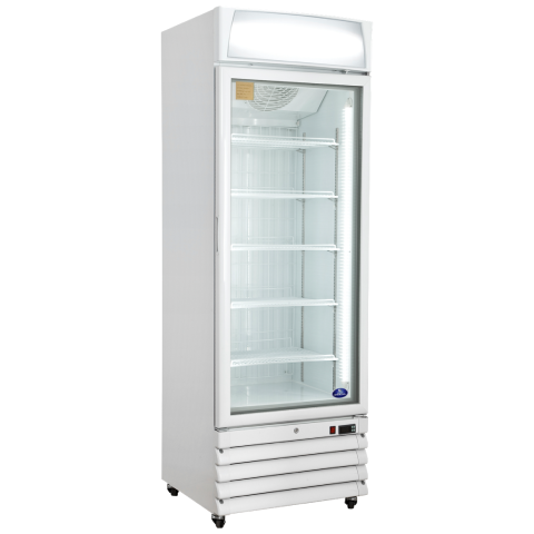 Freezer Display Single door Bottom Mount